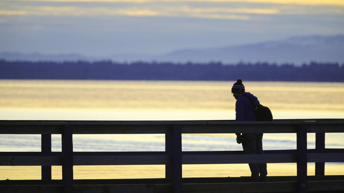 Person Looking Out at View on the Pier at Blackie Spit Park