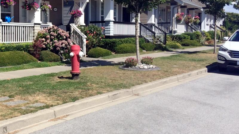 Parking Near a Fire Hydrant
