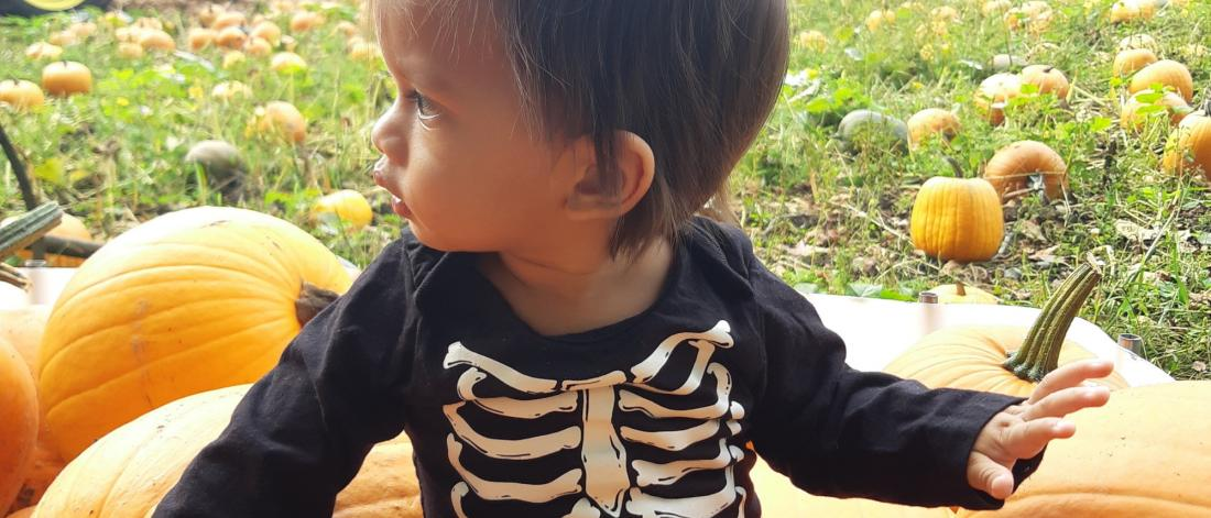 Child in pumpkin patch wearing a skeleton costume