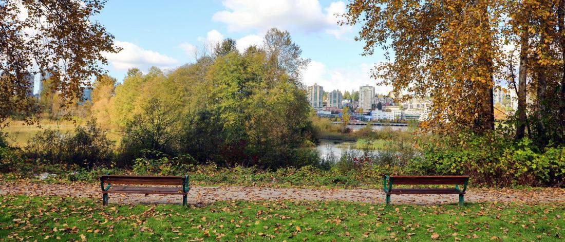 Benches with a view at Tannery Park