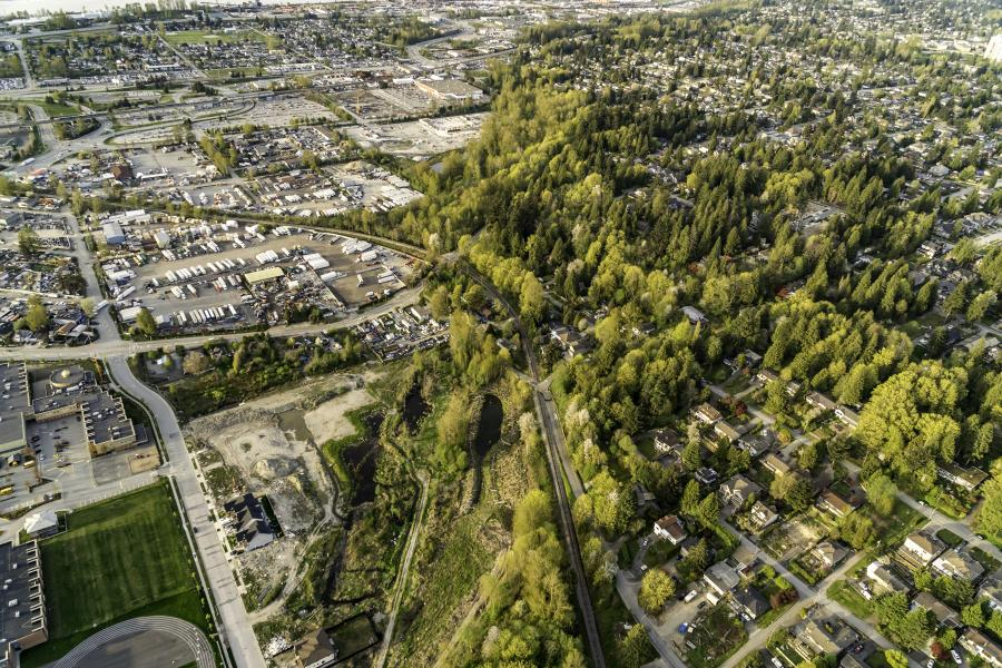 Aerial shot with trees and city