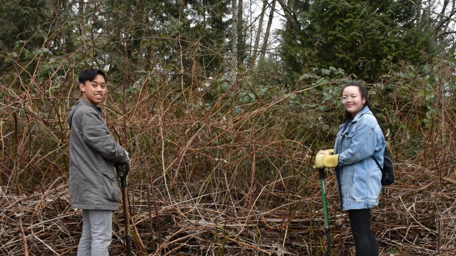 two volunteers next to invasive plants